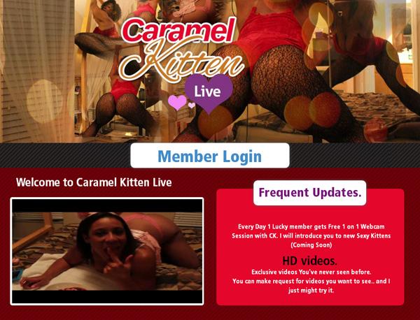 Caramel Kitten Live Free Pron