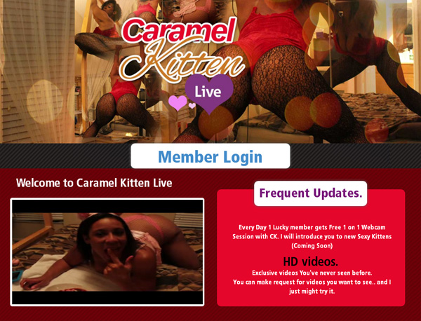 Passwords To Caramel Kitten Live
