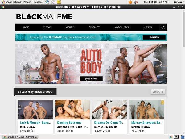 Black Male Me Members Password