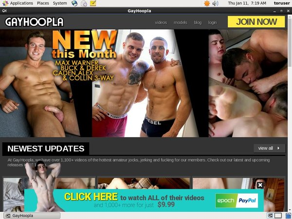 Gay Hoopla Home Page